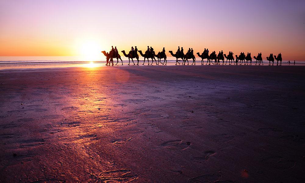 A camel caravan on Cable Beach