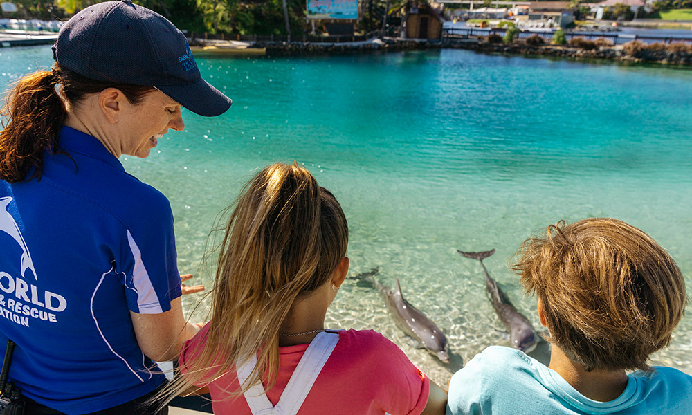 Animal Adventures at Sea World
