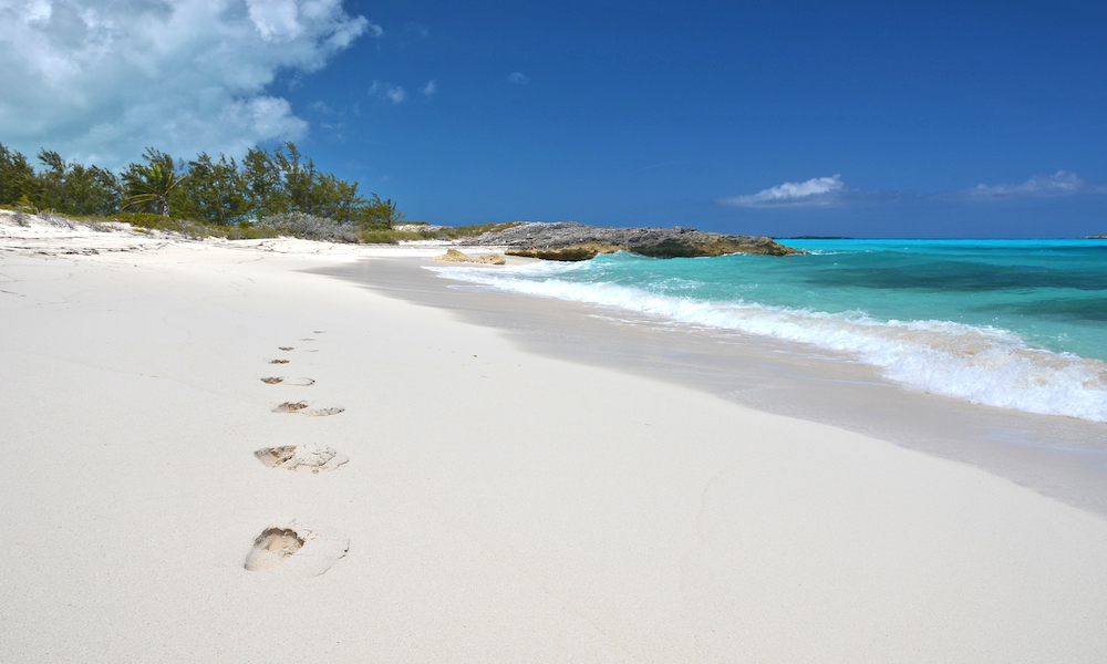 Leave only footprints, take nothing but photos